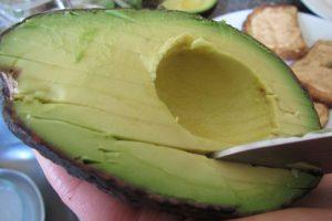 Nutrition In Avocados